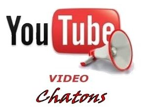 VIideo YouTub Chatons